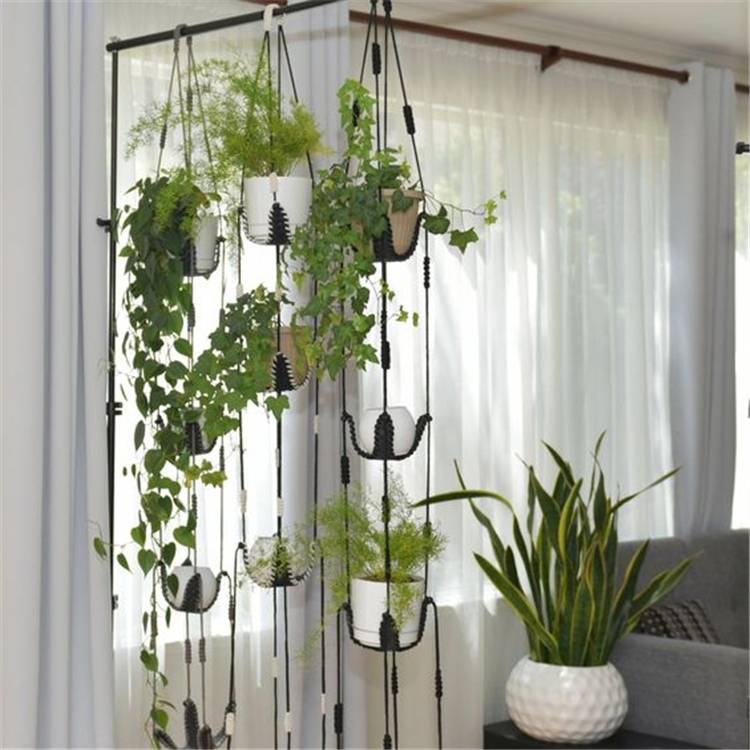 Impressive And Simple Indoor Hanging Plants Ideas For Your Home Decor; hanging plants; Indoor Plants decor; hanging plants decor; home decor; plants decor; wall hanging plants; plants decor; #homedecor #plantsdecor #hangingplants #indoorplants #indoorplantsdecor #hangingplantsdecor