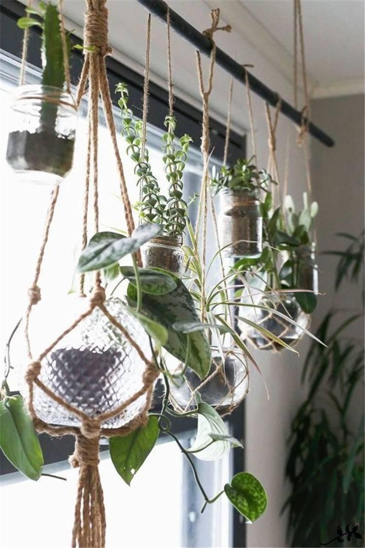 Impressive And Simple Indoor Hanging Plants Ideas For Your Home Decor; hanging plants; Indoor Plants decor; hanging plants decor; home decor; plants decor; wall hanging plants; plants decor; #homedecor #plantsdecor #hangingplants #indoorplants #indoorplantsdecor #hangingplantsdecor