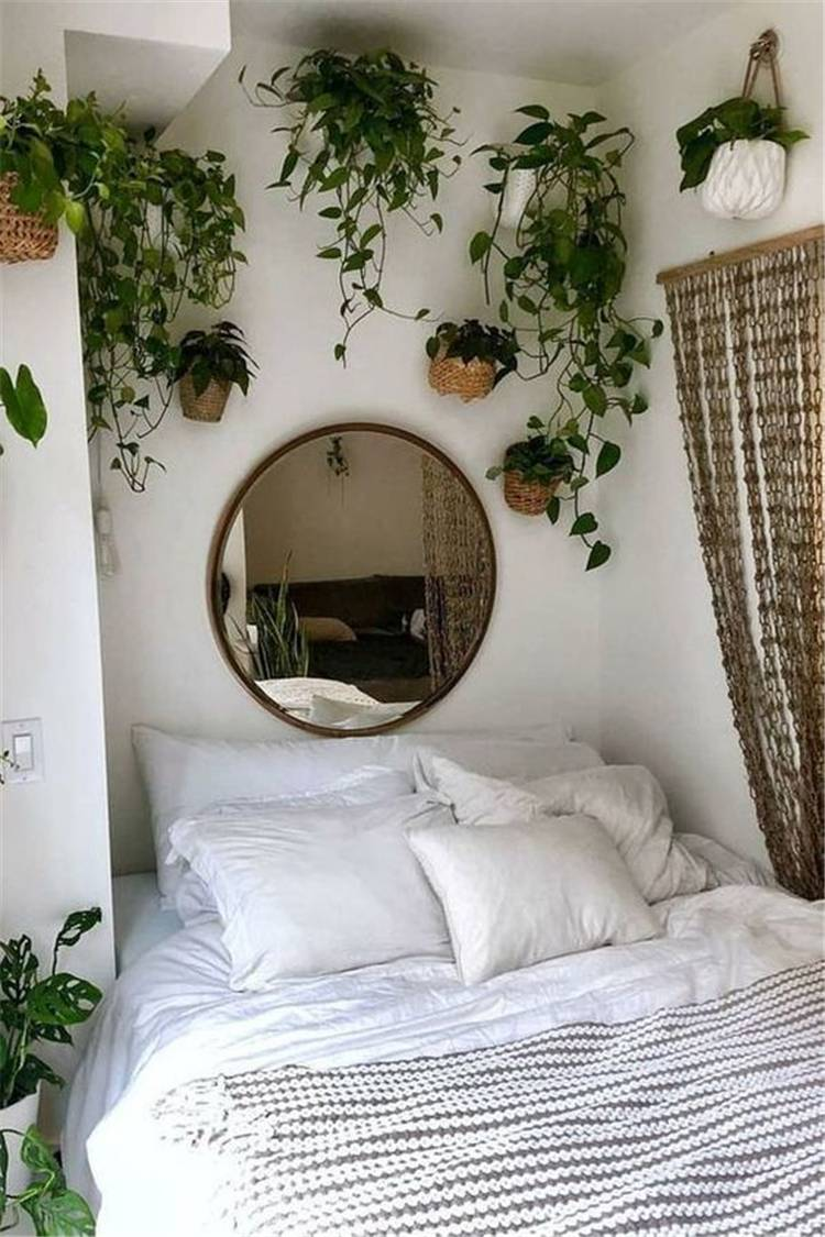 7 indoor plants decoration ideas to make your house