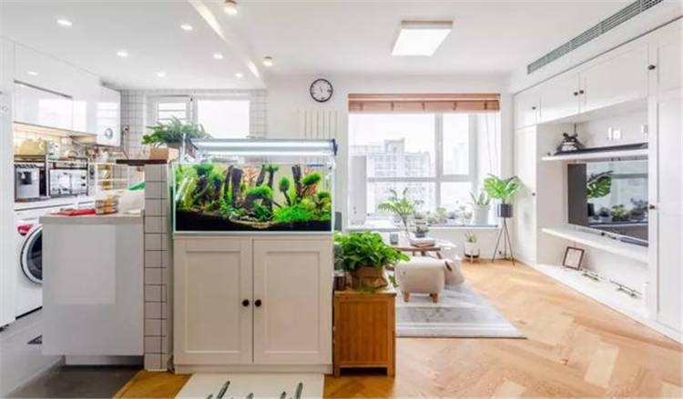 82㎡ Nordic Decoration Ideas With Fancy Indoor Plants; Apartment Decor; Home Decor; Scandinavian Style; Nordic Decoration; Indoor Plants; Home Forest #homedecor #apartmentdecor #scandinavianstyleapartment #Indoorplantsdecor