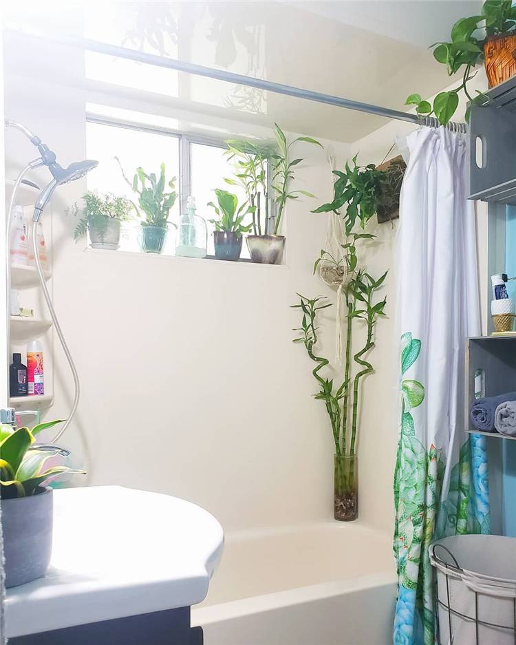 Indoor Plants Decoration Ideas To Make Your House Stunning; hanging plants; Indoor Plants decor; hanging plants decor; home decor; plants decor; wall hanging plants; plants decor; #homedecor #plantsdecor #hangingplants #indoorplants #indoorplantsdecor #hangingplantsdecor