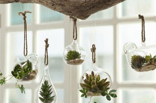 Gorgeous And Simple Indoor Hanging Plants Ideas For Your Sweet Home; hanging plants; Indoor Plants decor; hanging plants decor; home decor; plants decor; wall hanging plants; plants decor;#homedecor#plantsdecor#hangingplants#indoorplants#indoorplantsdecor#hangingplantsdecor