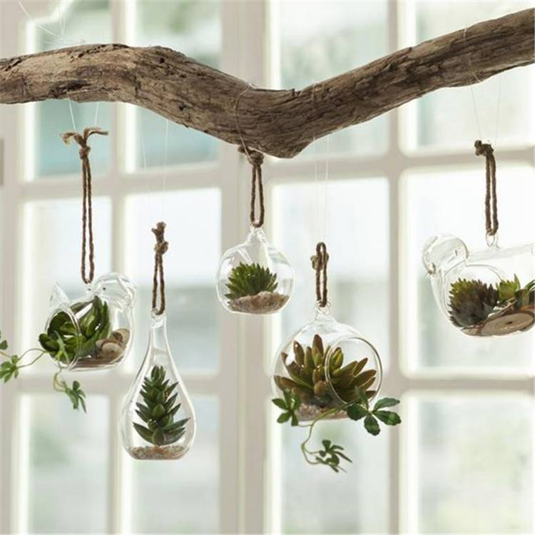 Gorgeous And Simple Indoor Hanging Plants Ideas For Your Sweet Home;  hanging plants; Indoor Plants decor; hanging plants decor; home decor; plants decor; wall hanging plants; plants decor; #homedecor #plantsdecor #hangingplants #indoorplants #indoorplantsdecor #hangingplantsdecor