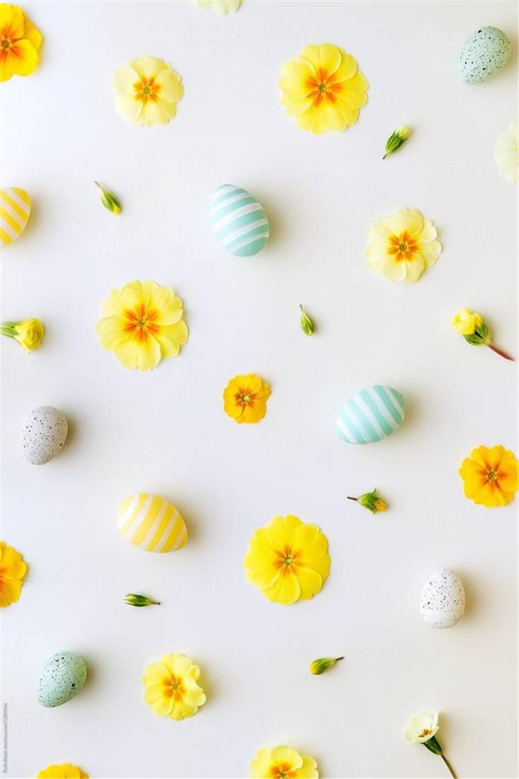 Simple Yet Cute Easter Wallpapers You Must Have This Year; Easter Wallpaper; Easter Wallpaper Ideas; Cute Easter Wallpaper; Easter Chicken Wallpaper; Bunny Easter Wallpaper; Easter Egg Wallpaper; ; Phone Wallpaper; IPhone Wallpaper #Easterwallpaper #wallpaper #phonewallpaper