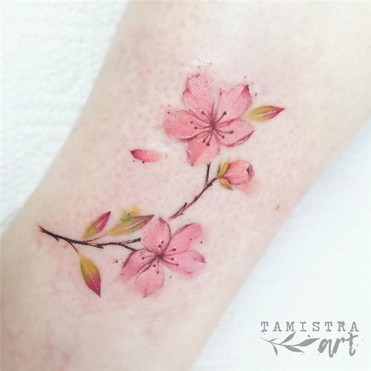 Gorgeous Cherry Blossom Tattoo Ideas For Your Inspiration; Cherry Blossom; Cherry Blossom Tattoo; Tattoo Ideas; #tattoo #tattooidea #cherryblossom #cherryblossomtattoo